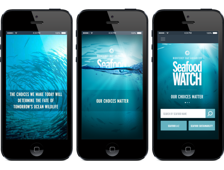seafoodwatch_loading_screens